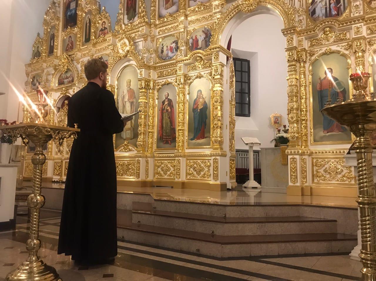 Владыце всех, Андрее, молися за нас
