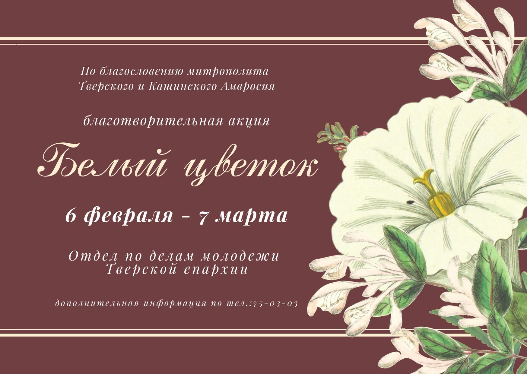 Продолжается благотворительная акция «Белый цветок»